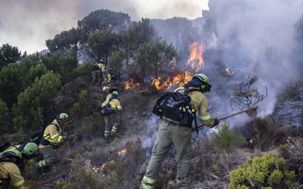 В Испании уже почти неделю продолжается сильный лесной пожар: тысячи людей эвакуированы (ФОТО)  - фото 2