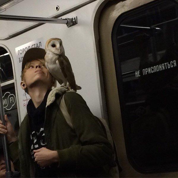 Добірка смішних та дуже дивних пасажирів в метро (Фото) - фото 9
