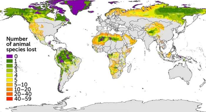 На Землі залишилося лише 3% незайманої природи - фото 2
