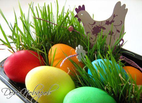 Самые оригинальные способы окраски яиц на Пасху (ФОТО) (ВИДЕО)