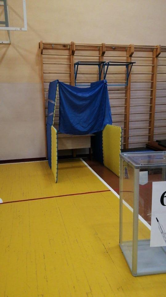 Динозавры, Путин в бюллетене и странные кабинки: подборка курьезов во время выборов - фото 9