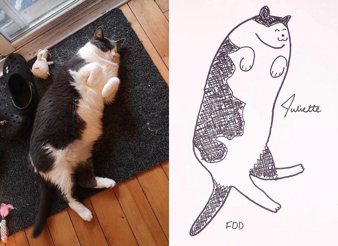 Художница прислала на конкурс рисунков абсолютно нелепый набросок любимого пса, и победила - в чем секрет - фото 4