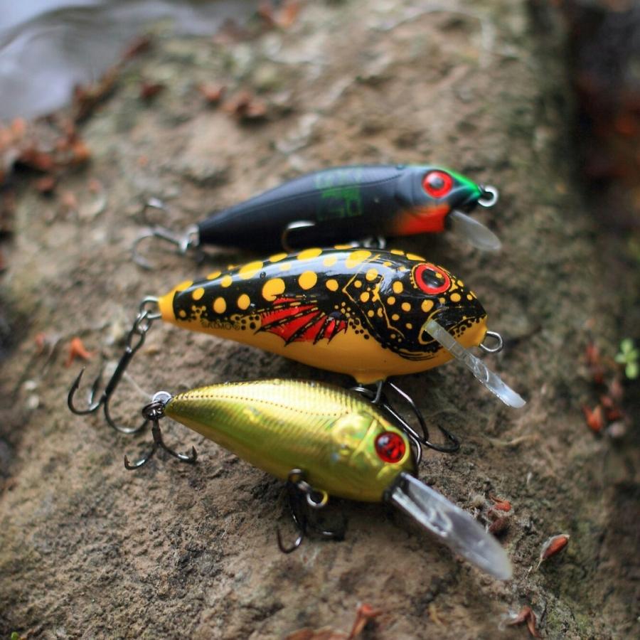 Главные особенности осенней ловли щуки - фото 2