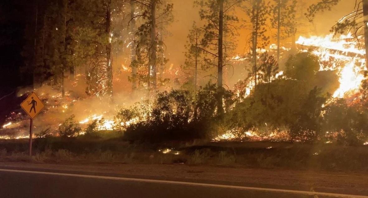 В США продолжают бушевать лесные пожары: огонь вытесняет людей из своих домов (ФОТО) - фото 3
