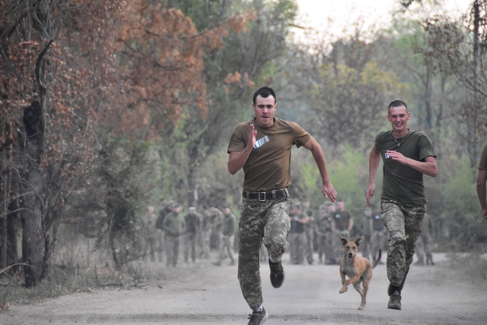 Ко Дню домашних любимцев украинские военные опубликовали фото животных с передовой - они невероятно милые - фото 4