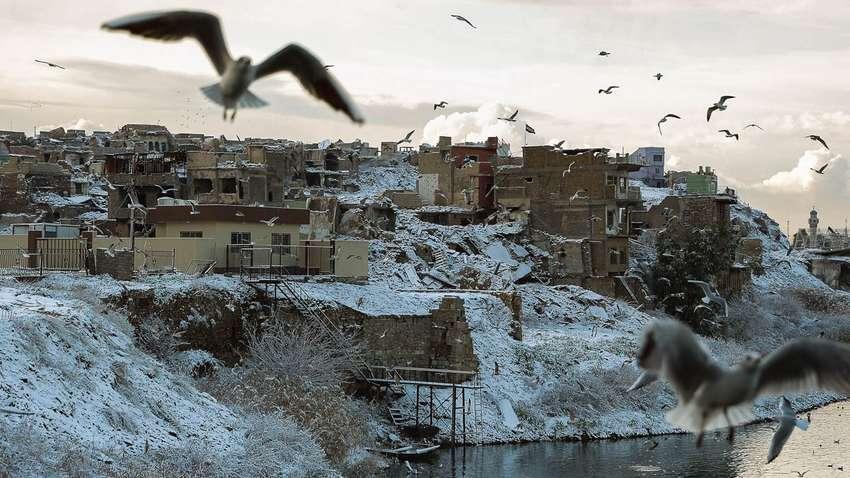 В Багдаде выпал снег: это второй случай за последних 100 лет