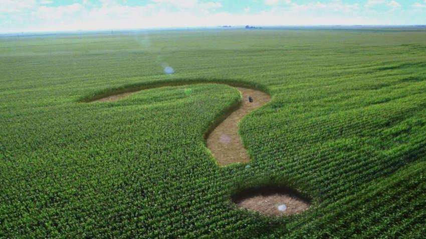 Рынок земли: эксперты не видят реформы в новом законопроекте