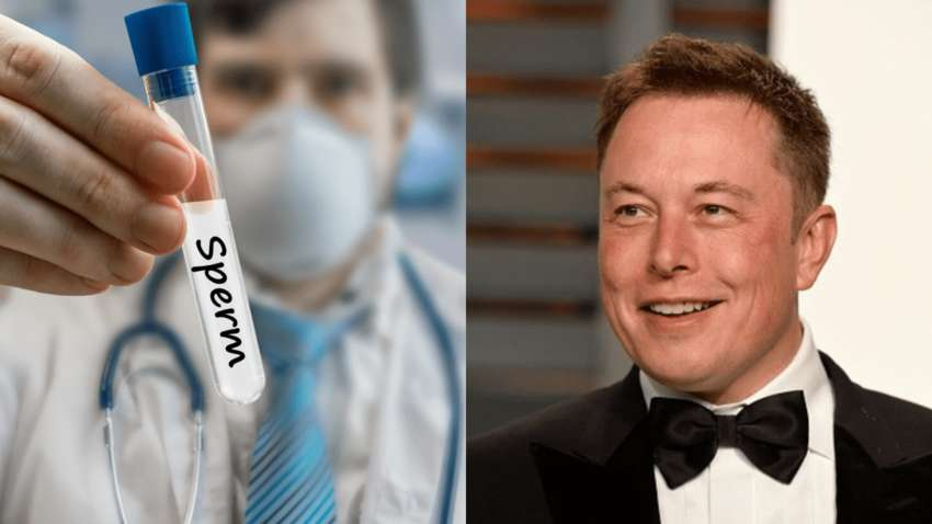 Мошенники торговали спермой Илона Маска: подробности смелой аферы в США