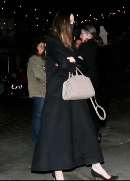Анджелину Джоли «застукали» на свидании с экс-мужем (ФОТО) - фото 3