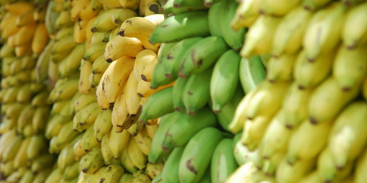 Які фрукти та овочі можна їсти натщесерце - фото 3