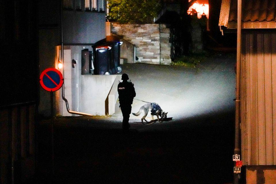 В Норвегии мужчина расстреливал людей из лука: есть погибшие (ФОТО)  - фото 2