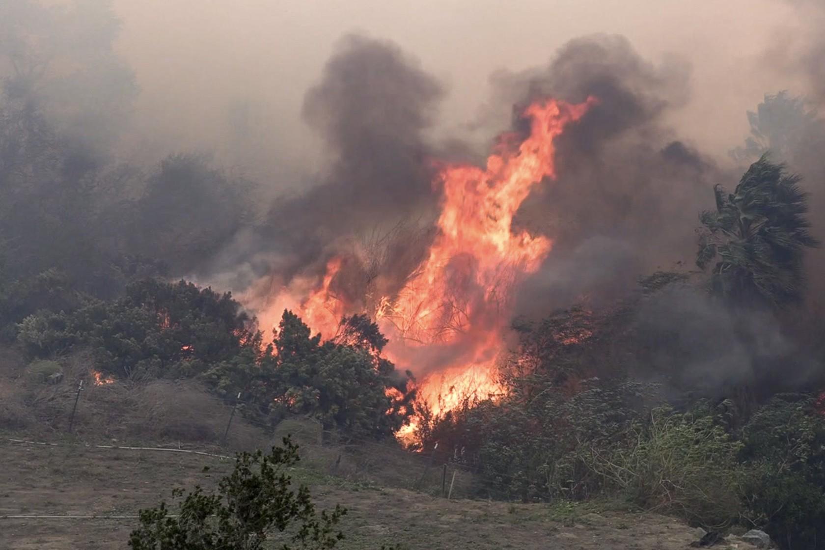 Десятки тисяч сімей змушені покинути домівки через лісові пожежі у США: опубліковані жахливі фото - фото 3