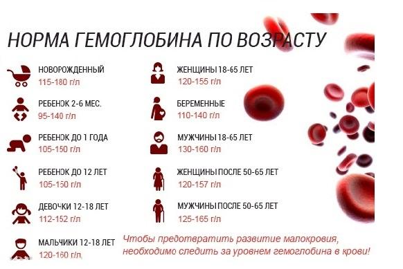 Як швидко підвищити гемоглобін: три корисних поради - фото 2