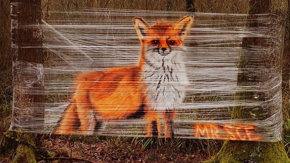 В Великобритании уличный художник рисует на пищевой пленке — удивительные фото - фото 2