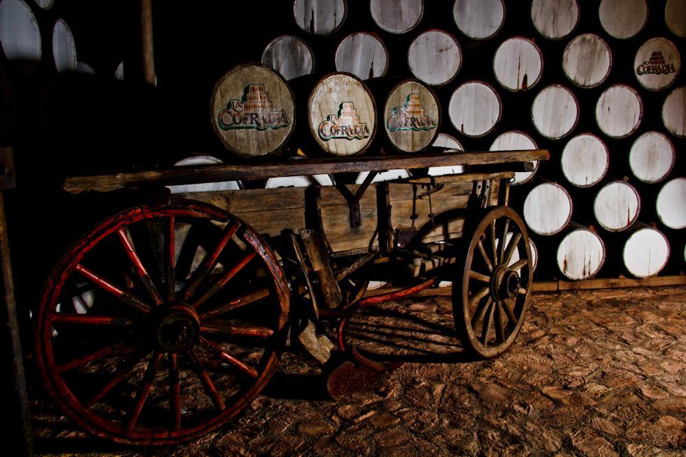 Провести ночь в бочке из-под текилы: в Мексике открыли отель на территории завода по производству напитка - фото 6