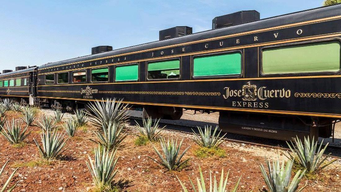 Всем текилы: в Мексике начал курсировать локомотив с безлимитным алкоголем (Фото) - фото 4