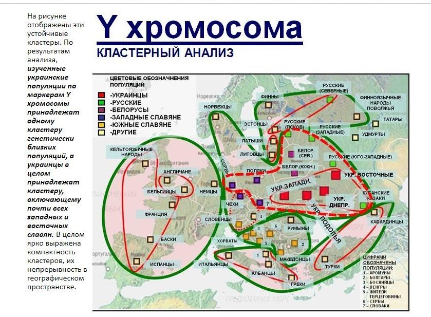 В России, спасая детей, погиб ученый-генетик, исследовавший генофонд украинцев (фото) - фото 3