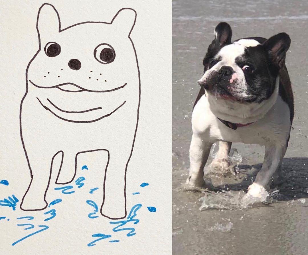 Художница прислала на конкурс рисунков абсолютно нелепый набросок любимого пса, и победила - в чем секрет - фото 6