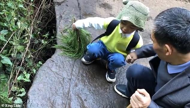Цінна знахідка: 5-річний хлопчик виявив у селі сліди динозавра - фото 4