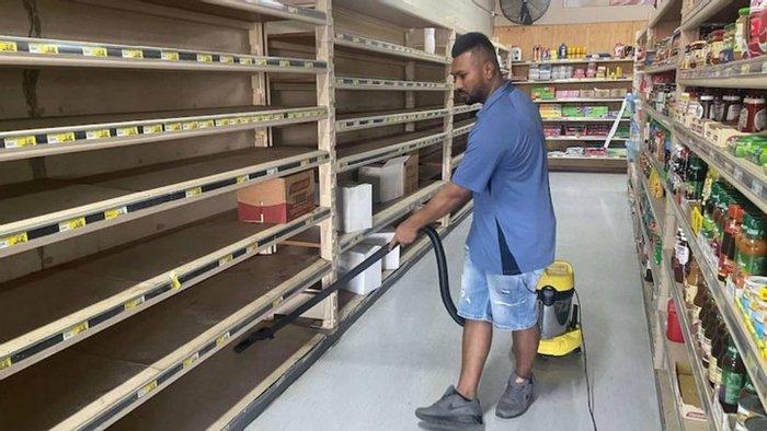В Австралии мыши «захватили» фермы и супермаркеты (ВИДЕО) - фото 2