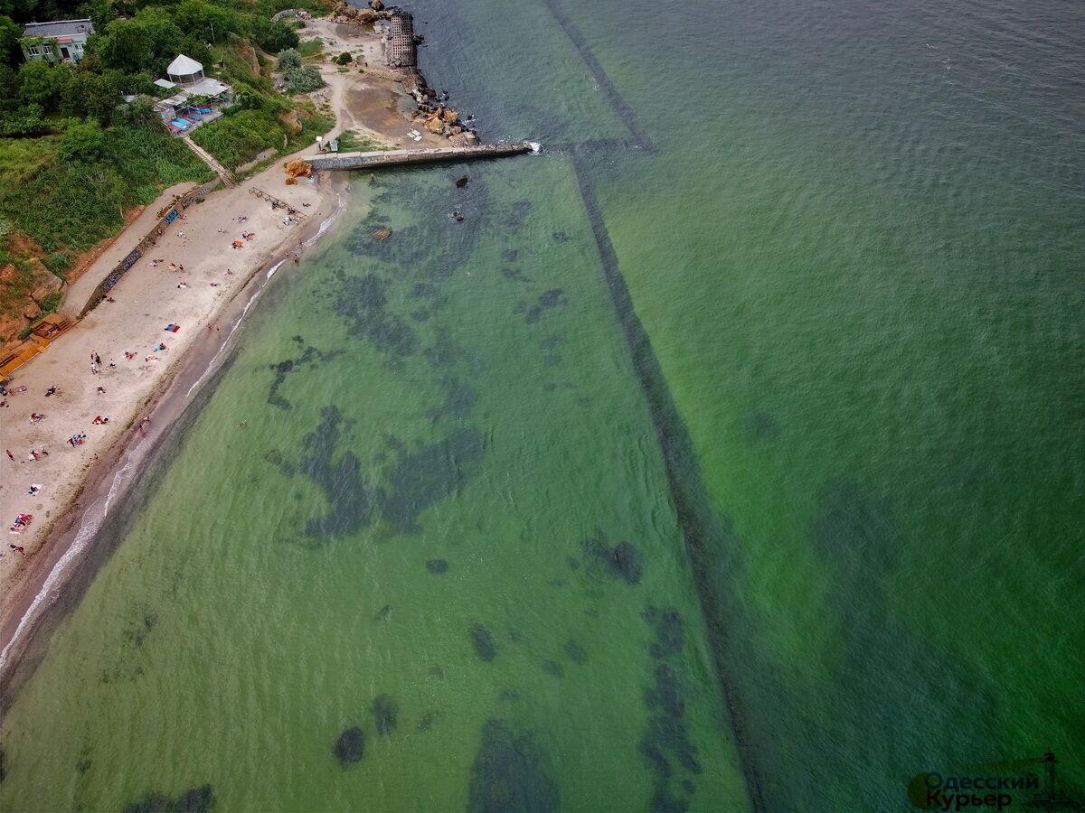 Море в Одесі раптово змінило колір (ФОТО) - фото 3
