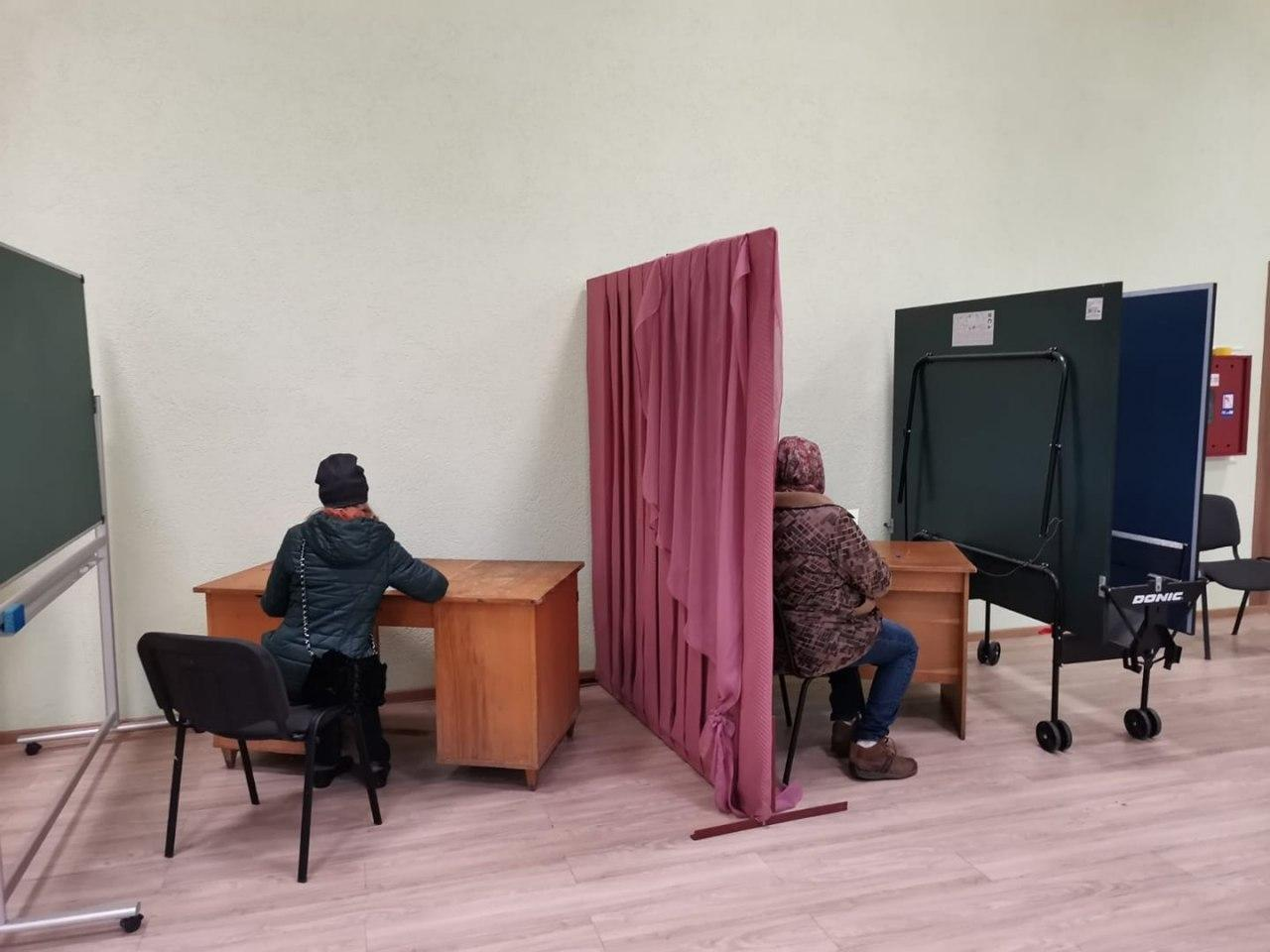 Динозавры, Путин в бюллетене и странные кабинки: подборка курьезов во время выборов - фото 4