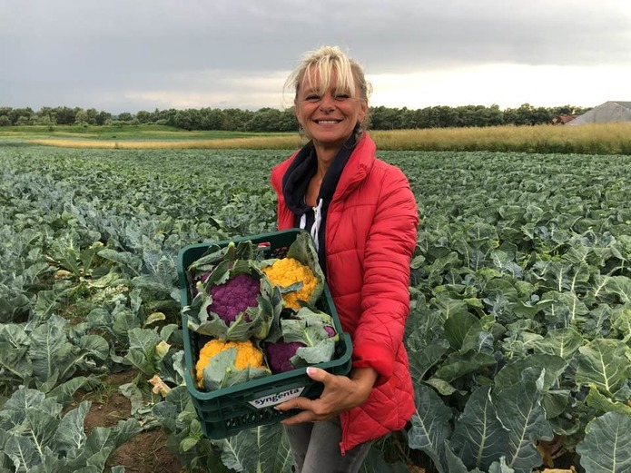 В Україні вирощують незвичайну капусту: що в ній особливого (ФОТО) - фото 2