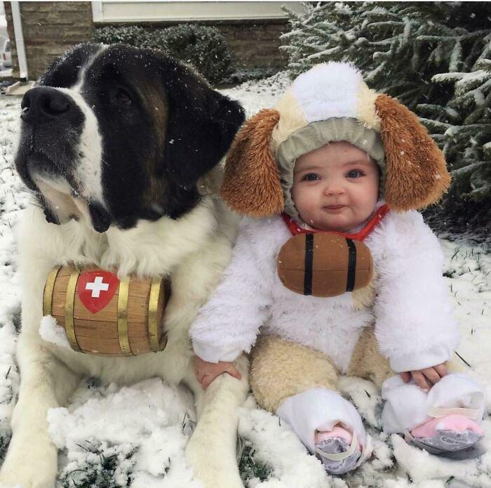 """Впечатляющие фото собак, которые стали """"большими мальчиками"""" - фото 7"""
