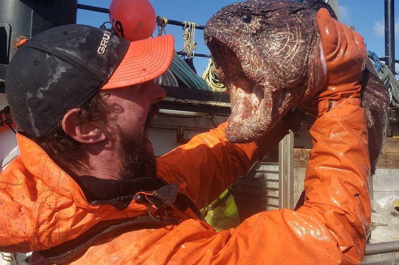 На Аляске рыбак поймал настоящего «морского монстра» (ФОТО) - фото 2