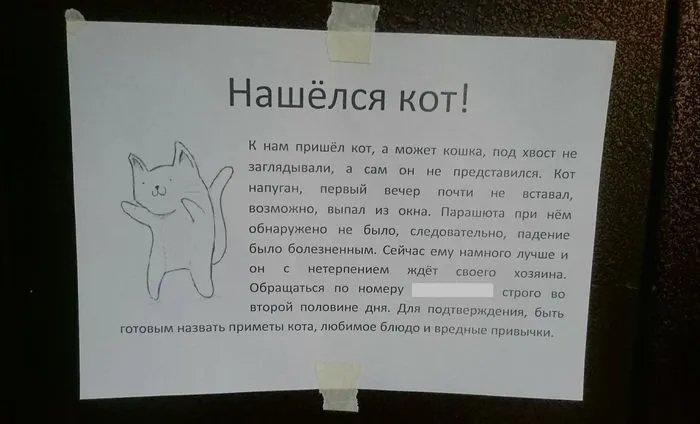 Минутка позитива: объявления о животных, которые заставят вас улыбнуться (ФОТО) - фото 12