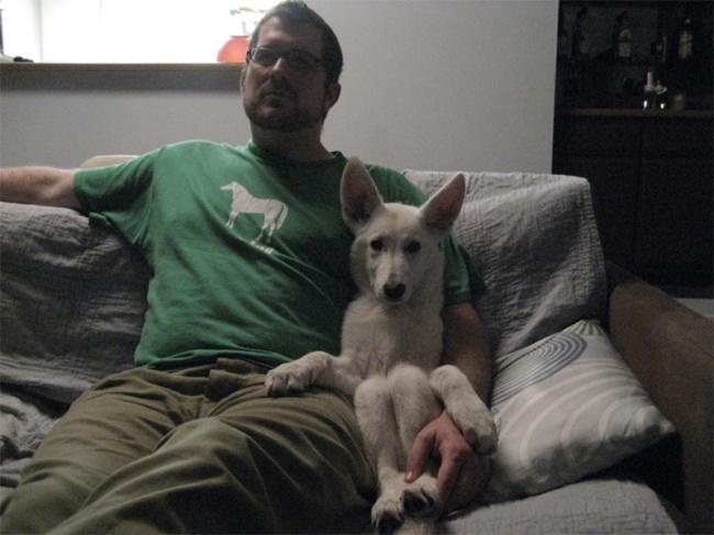 Порция позитива: собаки, которые явно возомнили себя человеком (фото) - фото 5