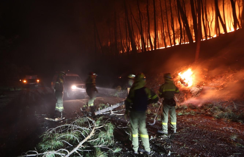 В Испании снова полыхают леса: власти подозревают умышленный поджог (ФОТО) - фото 2