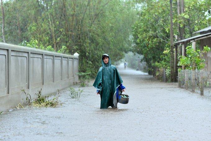 Через природні катаклізми у В'єтнамі постраждало понад 5 млн осіб - ООН - фото 6