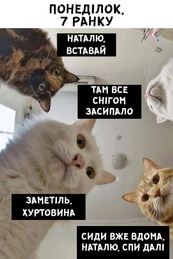 Найсмішніші меми про погіршення погоди в Україні (Фото) - фото 2