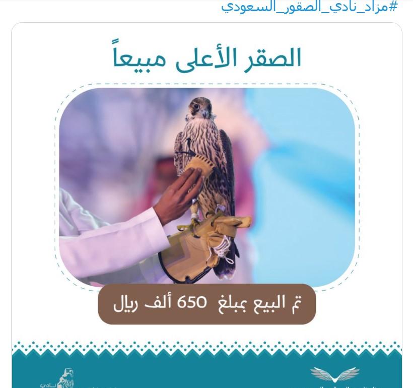 Нереальная сумма: в Саудовской Аравии купили самого дорогого сокола в мире (фото)  - фото 2