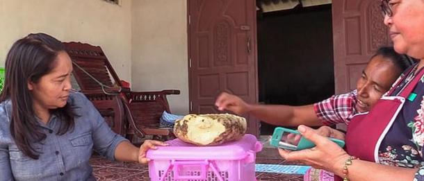 Мешканка Таїланду розбагатіла за допомогою «камня» (ФОТО) - фото 3