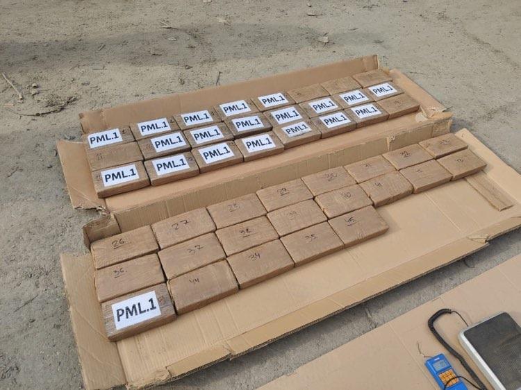"""В Одеському порту в контейнері з бананами з Еквадору виявили півцентнера """"фірмового"""" кокаїну - прокуратура - фото 2"""
