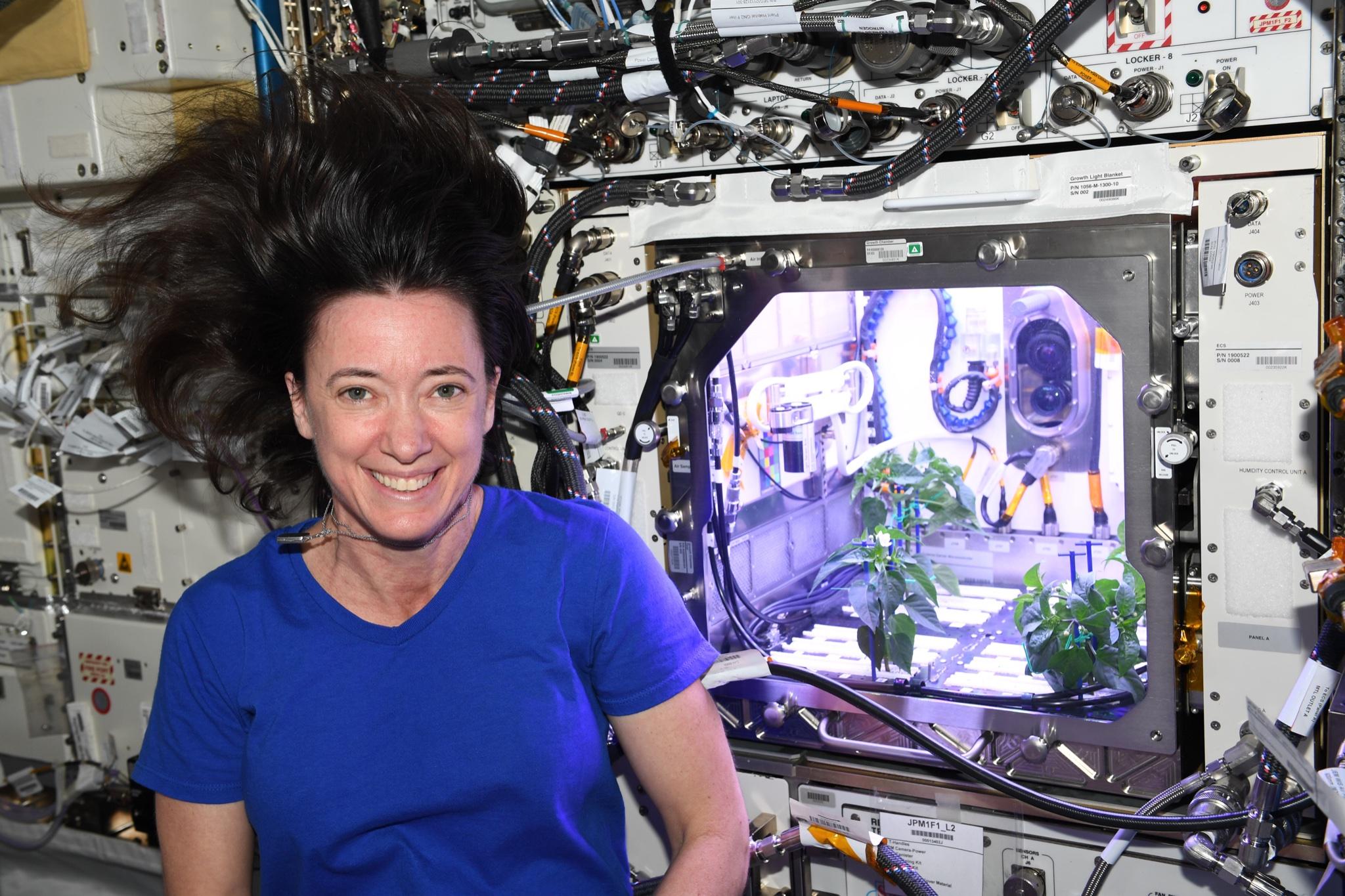 В NASA показали перец, который вырос в космосе - фото 3
