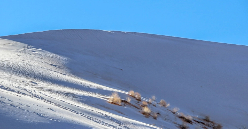 У Сахарі випав сніг — дивовижні фото морозної пустелі - фото 4