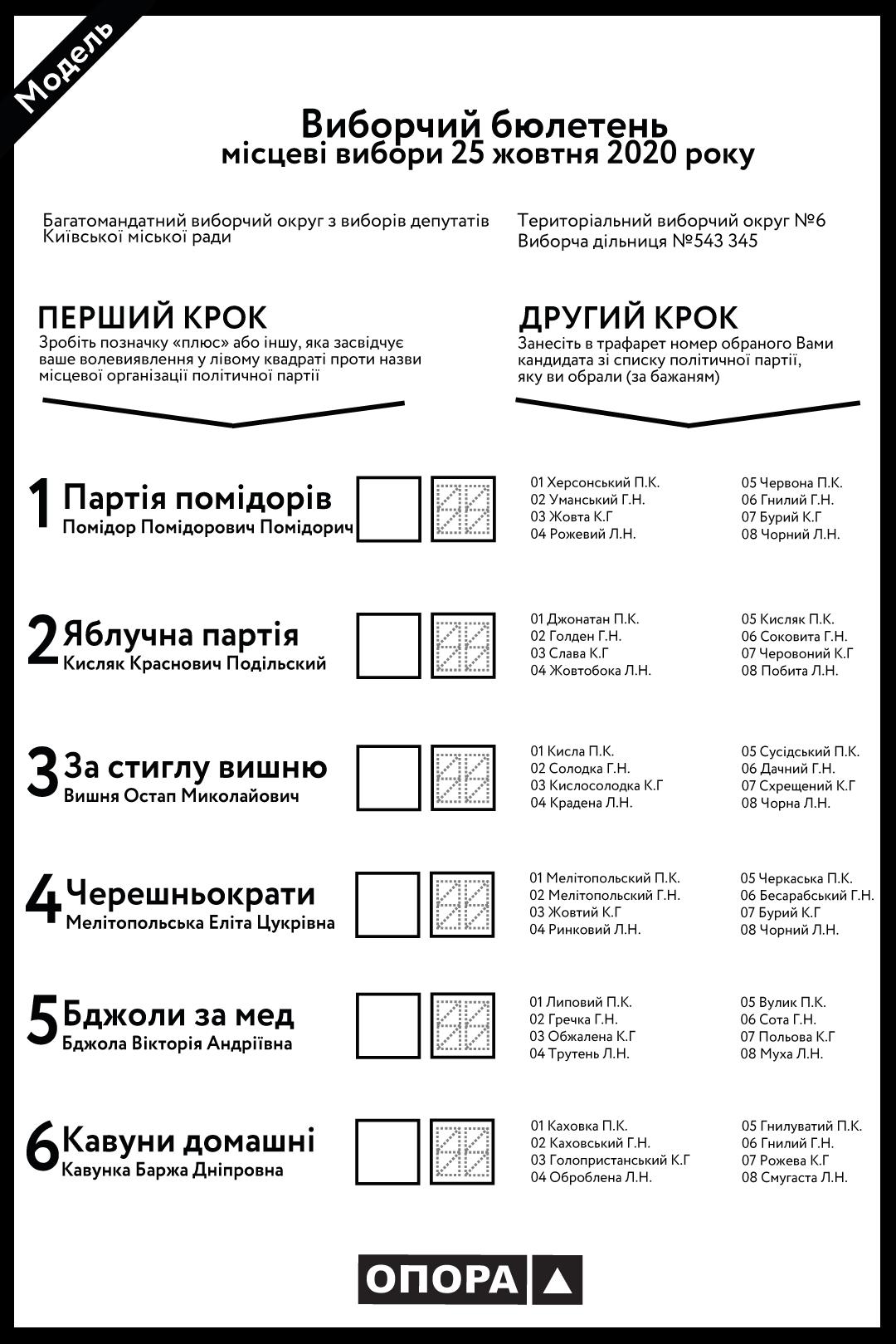 В ОПОРЕ объяснили, как пользоваться новыми бюллетенями на местных выборах - фото 2