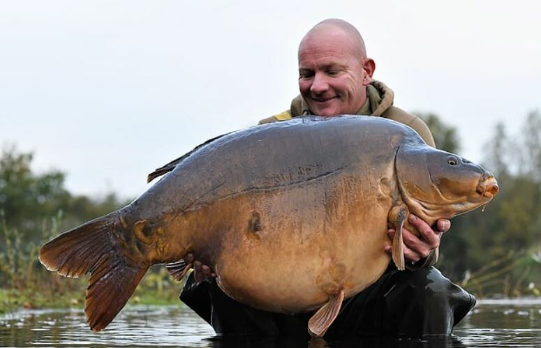 Весом 34 килограмма: рыбак поймал самого большого карпа-рекордсмена (фото)  - фото 2