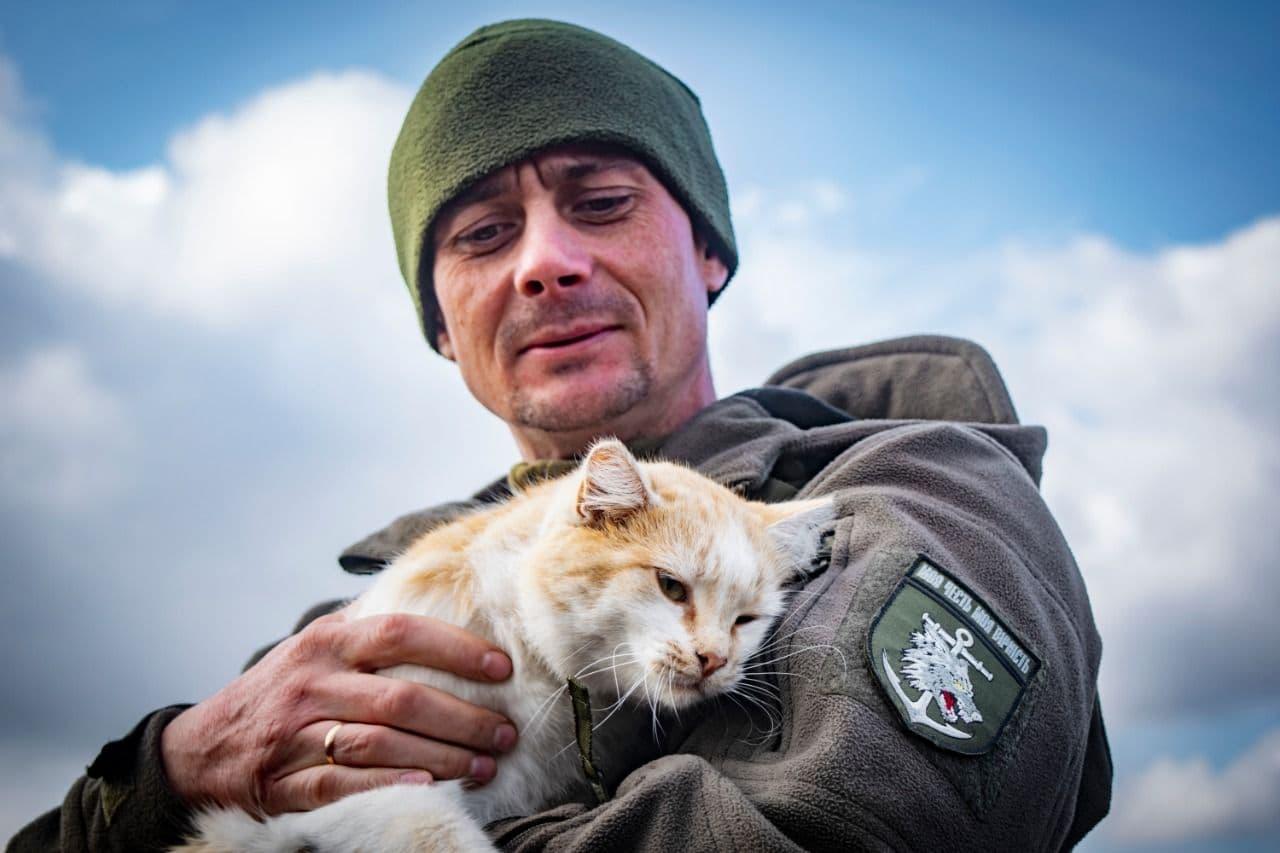 Ко Дню домашних любимцев украинские военные опубликовали фото животных с передовой - они невероятно милые - фото 5