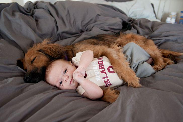 Хорошие фотографии, которые стоит посмотреть перед сном - фото 9