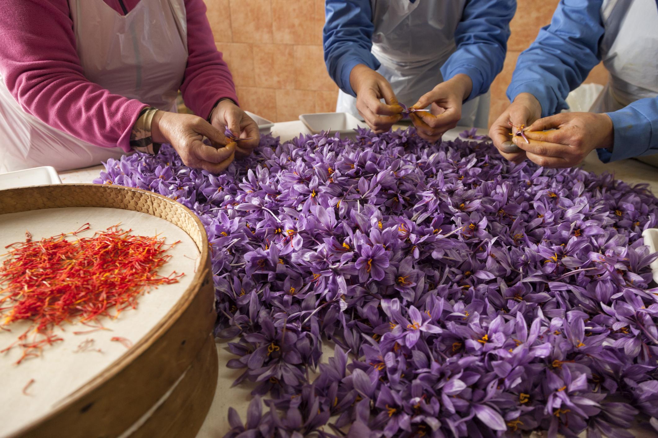Десять самых дорогих цветов в мире: как собрать букет за миллионы долларов - фото 8