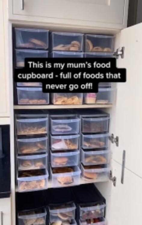 Диетолог два года хранит дома еду из McDonald's: что с ней произошло (ФОТО, ВИДЕО) - фото 2