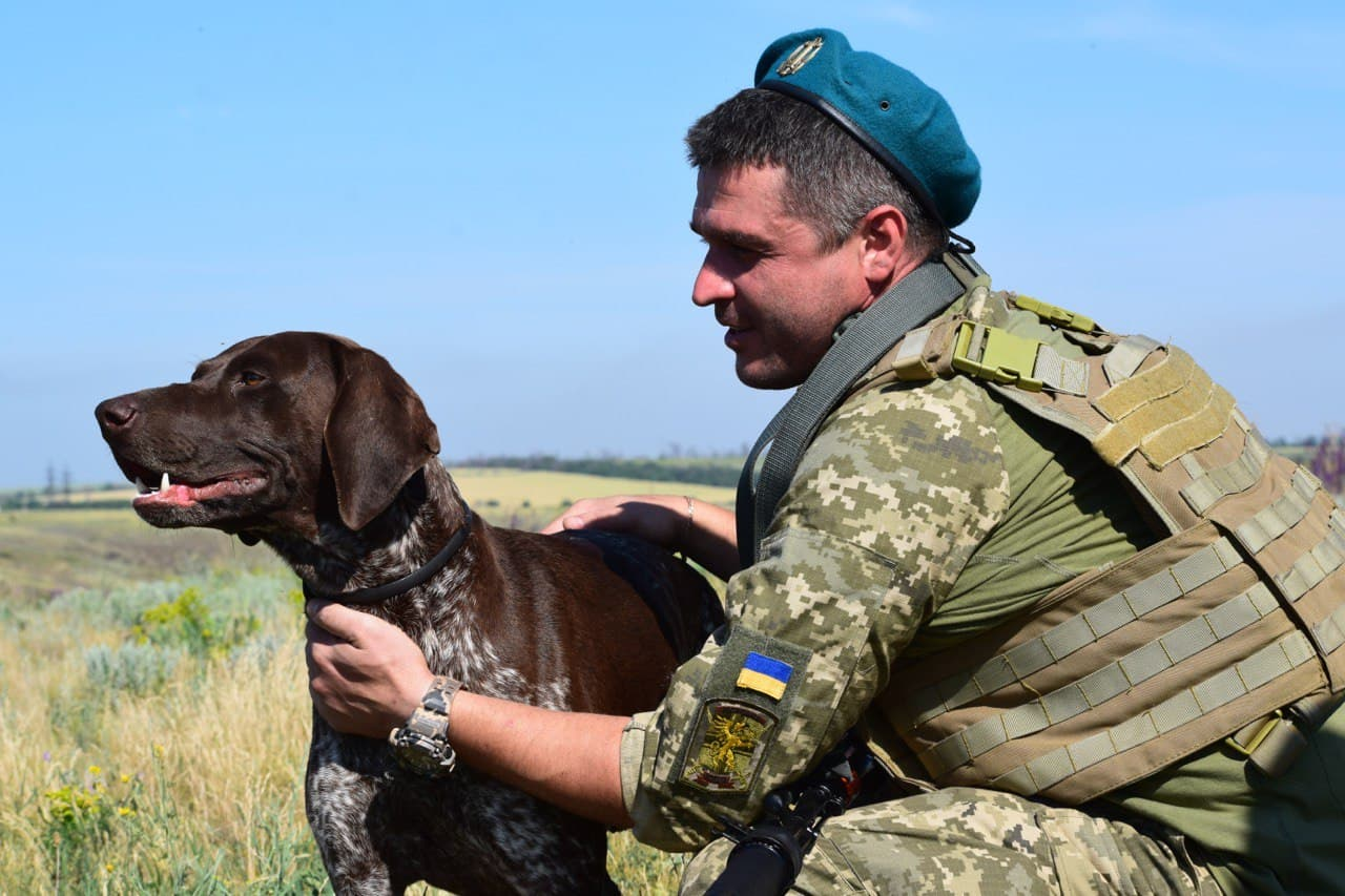 Ко Дню домашних любимцев украинские военные опубликовали фото животных с передовой - они невероятно милые - фото 2