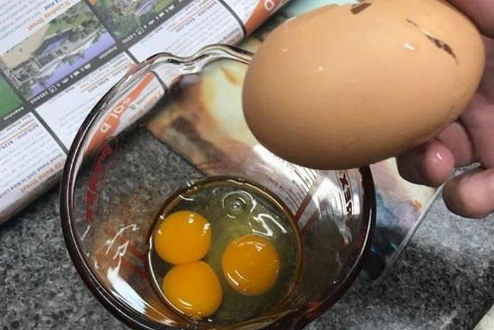 Одно на 25 миллионов: австралиец нашел редчайшее куриное яйцо - фото 2