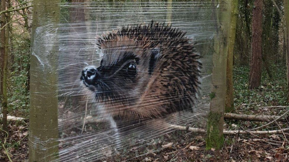 В Великобритании уличный художник рисует на пищевой пленке — удивительные фото - фото 5