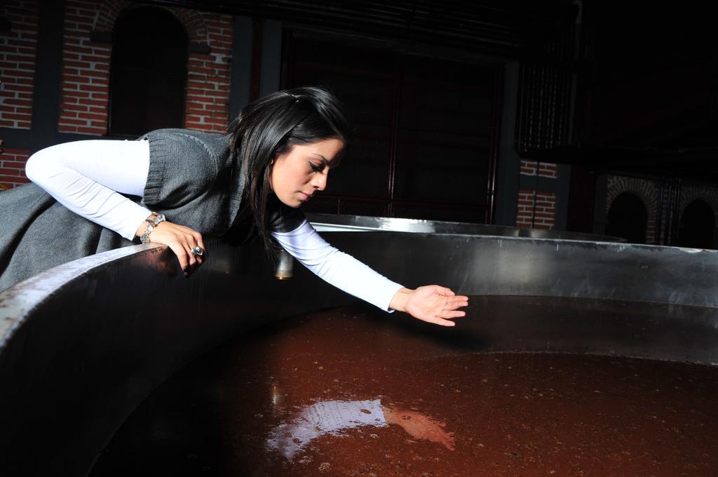 Провести ночь в бочке из-под текилы: в Мексике открыли отель на территории завода по производству напитка - фото 10
