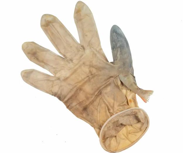 Как защитные маски и перчатки вредят природе (ФОТО) - фото 4